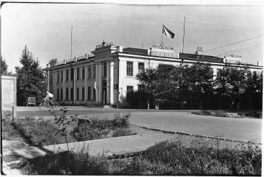 Здание бывшего треста Амурзолото